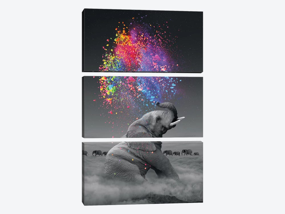 Elephant - Color Explosion by Soaring Anchor Designs 3-piece Art Print