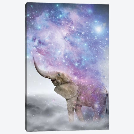 Elephant - Dust Galaxy Canvas Print #SOA28} by Soaring Anchor Designs Canvas Wall Art