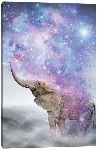 Elephant - Dust Galaxy Canvas Art Print