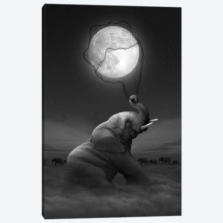 Elephant - Moon Catcher Canvas Print #SOA29} by Soaring Anchor Designs Canvas Artwork