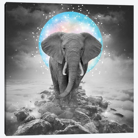 Elephant - On Rocks Color Moon Canvas Print #SOA30} by Soaring Anchor Designs Canvas Art Print