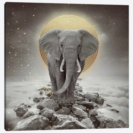 Elephant - On Rocks Stay Gold Canvas Print #SOA31} by Soaring Anchor Designs Canvas Print