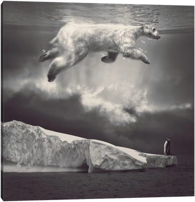 Fernweh - Polar Bear Sky  Canvas Art Print