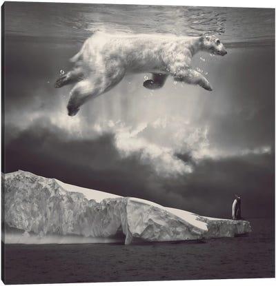 Fernweh - Polar Bear Sky  Canvas Art Print