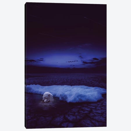 If Not Us - Polar Bear Canvas Print #SOA38} by Soaring Anchor Designs Canvas Art Print