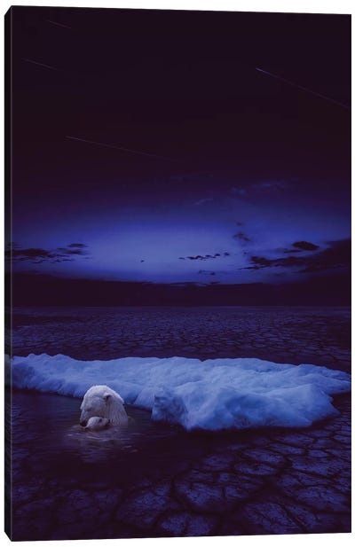 If Not Us - Polar Bear Canvas Art Print