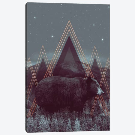 In Wildness - Bear  Canvas Print #SOA40} by Soaring Anchor Designs Canvas Artwork