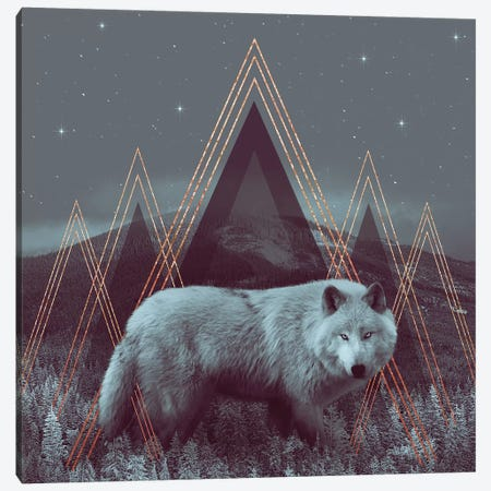 In Wildness - Wolf I Canvas Print #SOA41} by Soaring Anchor Designs Canvas Art