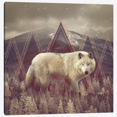 In Wildness - Wolf II Canvas Print #SOA42} by Soaring Anchor Designs Canvas Art