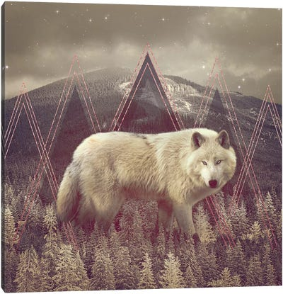 In Wildness - Wolf II Canvas Art Print