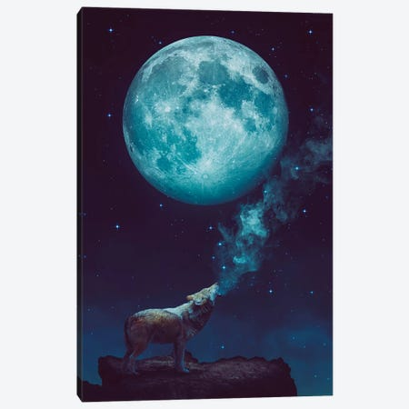 Lone Wolf Howl - Night Canvas Print #SOA45} by Soaring Anchor Designs Art Print