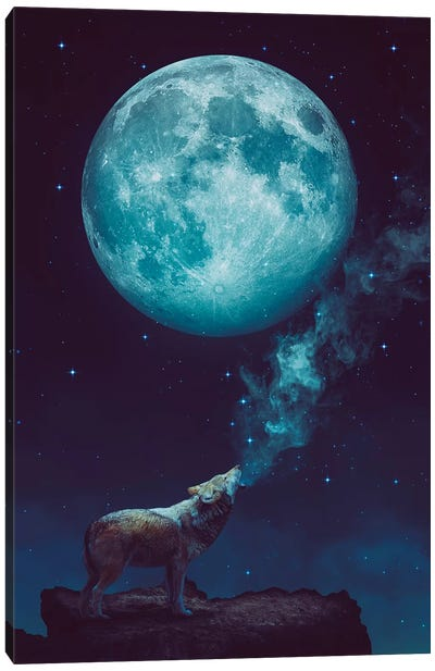 Lone Wolf Howl - Night Canvas Art Print