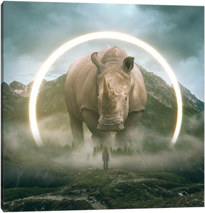 Aegis Rhino I Canvas Art Print