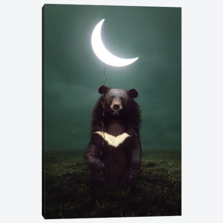 My Light - Moon Bear Canvas Print #SOA52} by Soaring Anchor Designs Canvas Print