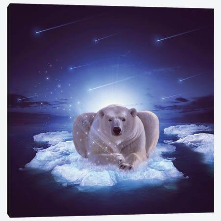 Polar Blessing Canvas Print #SOA59} by Soaring Anchor Designs Canvas Art Print