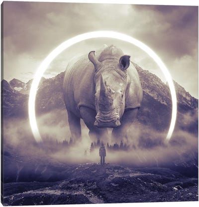 Aegis Rhino II Canvas Art Print
