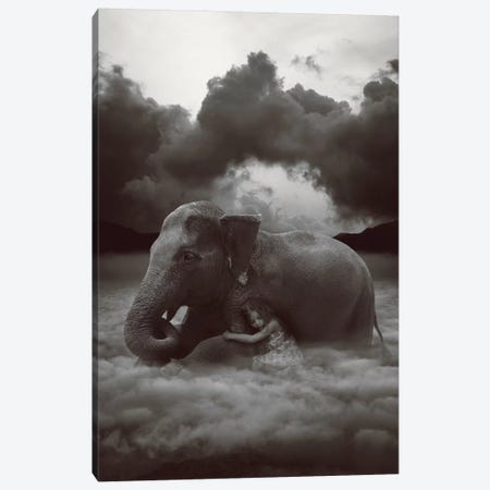 Soft Heart, Cruel World Canvas Print #SOA68} by Soaring Anchor Designs Canvas Wall Art