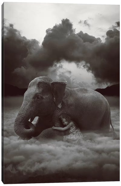 Soft Heart, Cruel World Canvas Art Print