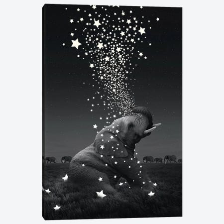 Star Light - Elephants Canvas Print #SOA74} by Soaring Anchor Designs Canvas Wall Art