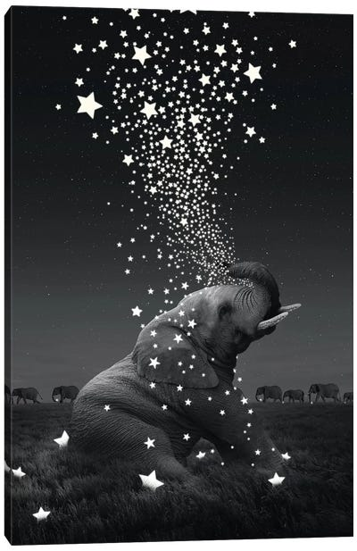Star Light - Elephants Canvas Art Print