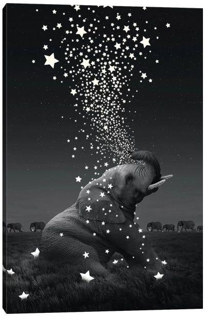 Star Light - Elephants Canvas Art Print