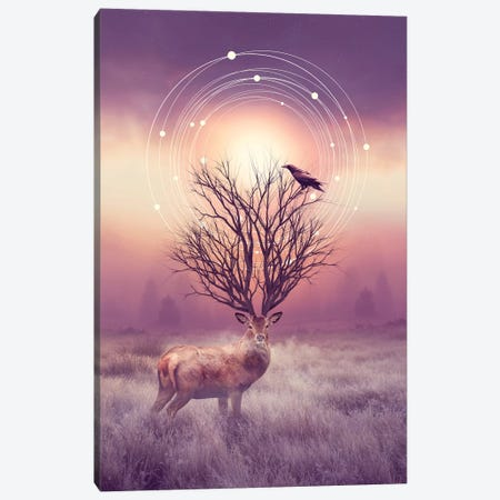 Stillness - Elk Canvas Print #SOA75} by Soaring Anchor Designs Canvas Artwork