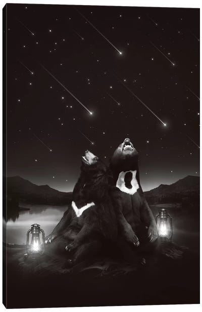 Sun Moon Stars - Bears Canvas Art Print