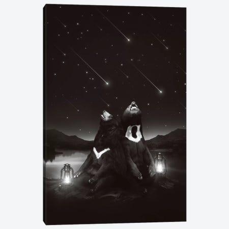 Sun Moon Stars - Bears Canvas Print #SOA76} by Soaring Anchor Designs Canvas Artwork