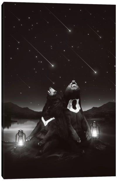 Sun Moon Stars - Bears Canvas Art Print