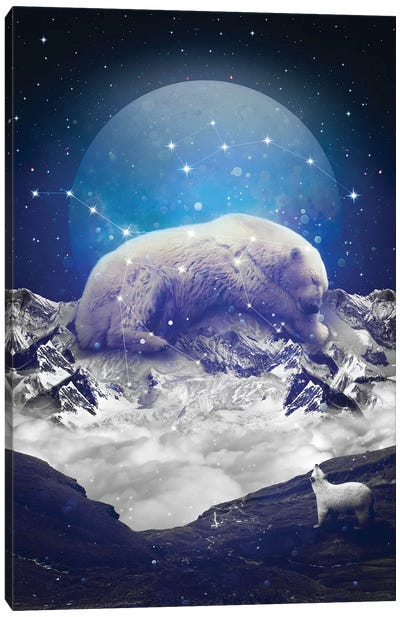 Ursa Major Minor II Canvas Art Print