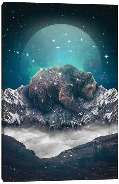 Ursa Major Minor I Canvas Art Print