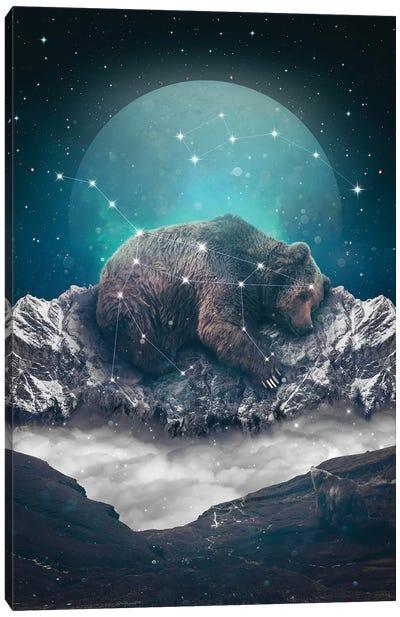 Ursa Major Minor I Canvas Art Print