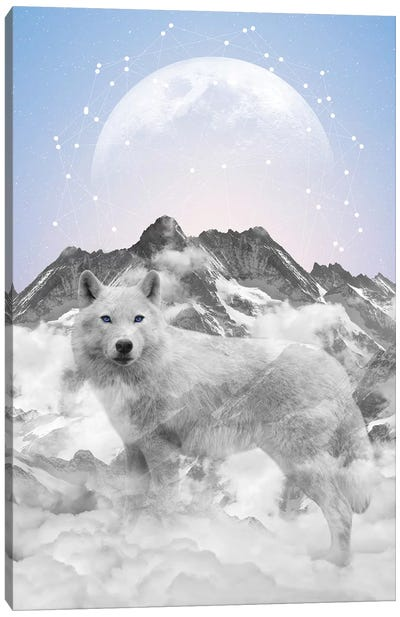 Walk Alone - Wolf Canvas Art Print