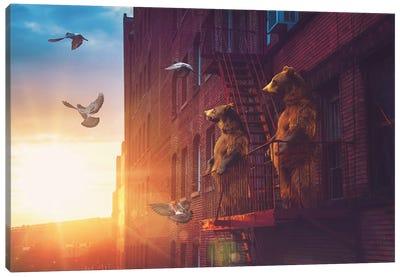 Bears Balcony NYC Canvas Art Print