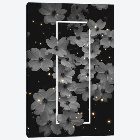 Dogwood Blossoms Mono White 3-Piece Canvas #SOA85} by Soaring Anchor Designs Canvas Print