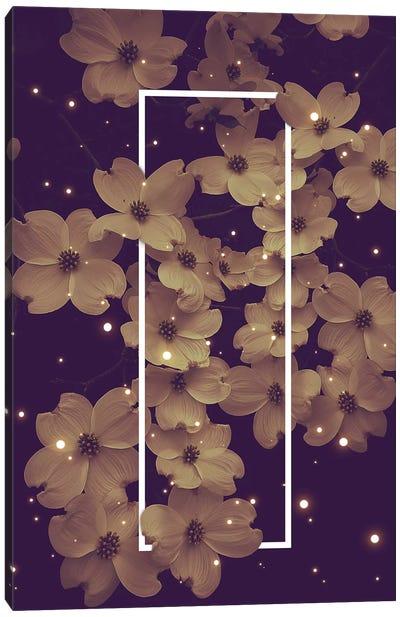 Dogwood Blossoms Purple Canvas Art Print