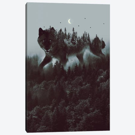 Noctivagant Black Wolf Canvas Print #SOA94} by Soaring Anchor Designs Canvas Artwork