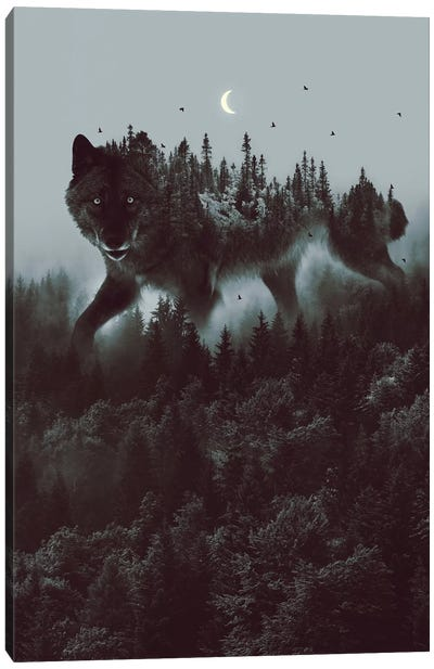 Noctivagant Black Wolf Canvas Art Print