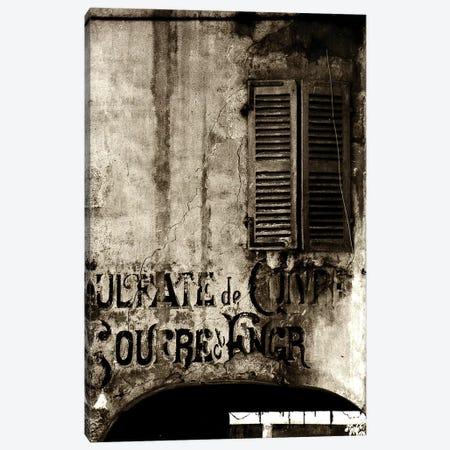Past So Close Canvas Print #SOE19} by Sophie Etchart Canvas Art Print