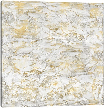 Textural With Gold II Canvas Art Print
