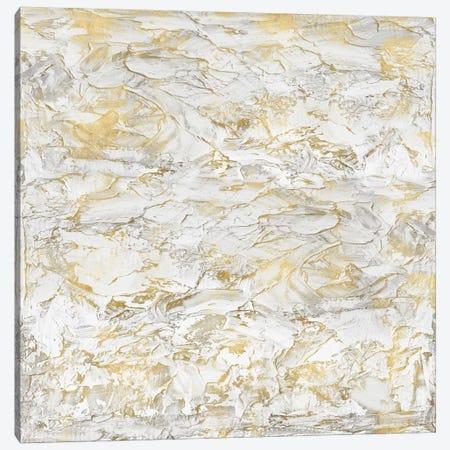 Textural With Gold II Canvas Print #SOF2} by Sofia Gordon Canvas Art Print