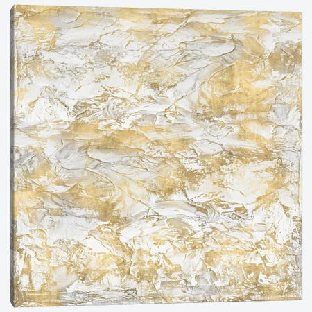 Textural With Gold III Canvas Print #SOF3} by Sofia Gordon Canvas Print