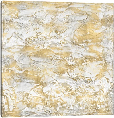 Textural With Gold III Canvas Art Print