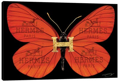 Fly As Hermes Canvas Art Print