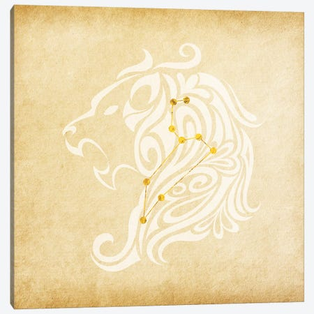 Influential Lion with Constellation Canvas Print #SOL11} by 5by5collective Canvas Art