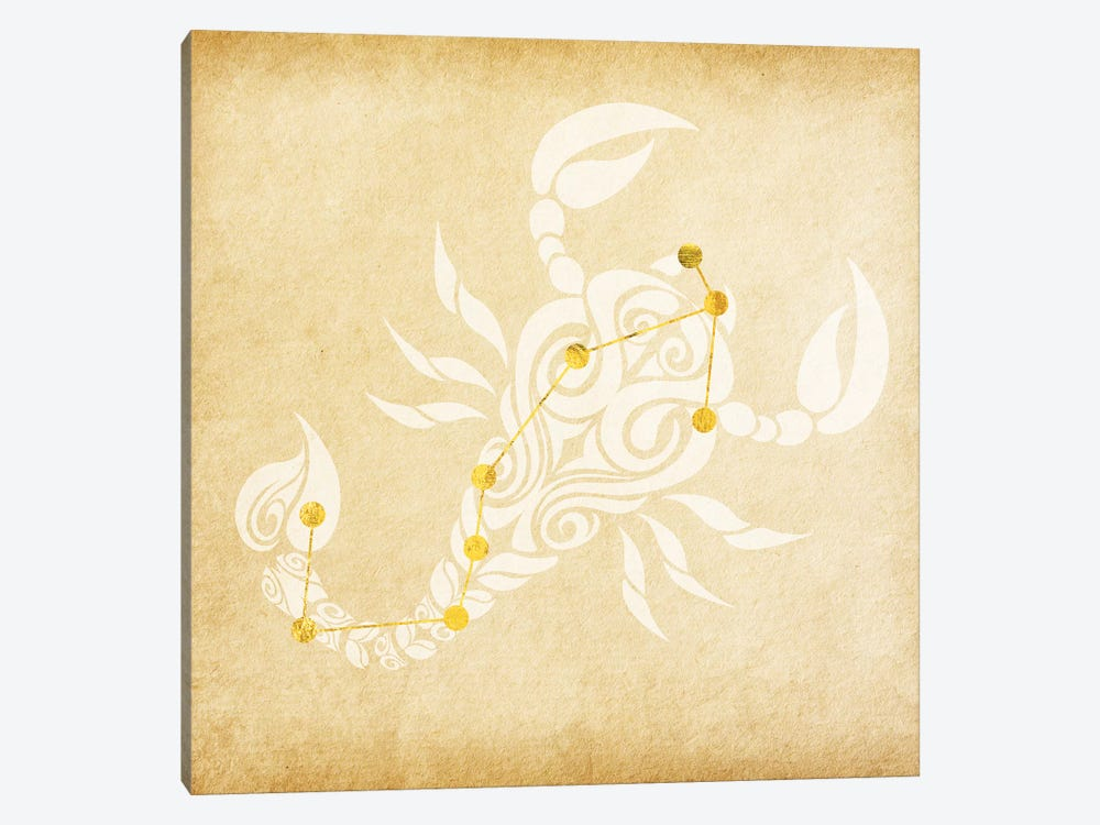 Passionate Scorpion with Constellation by 5by5collective 1-piece Canvas Print