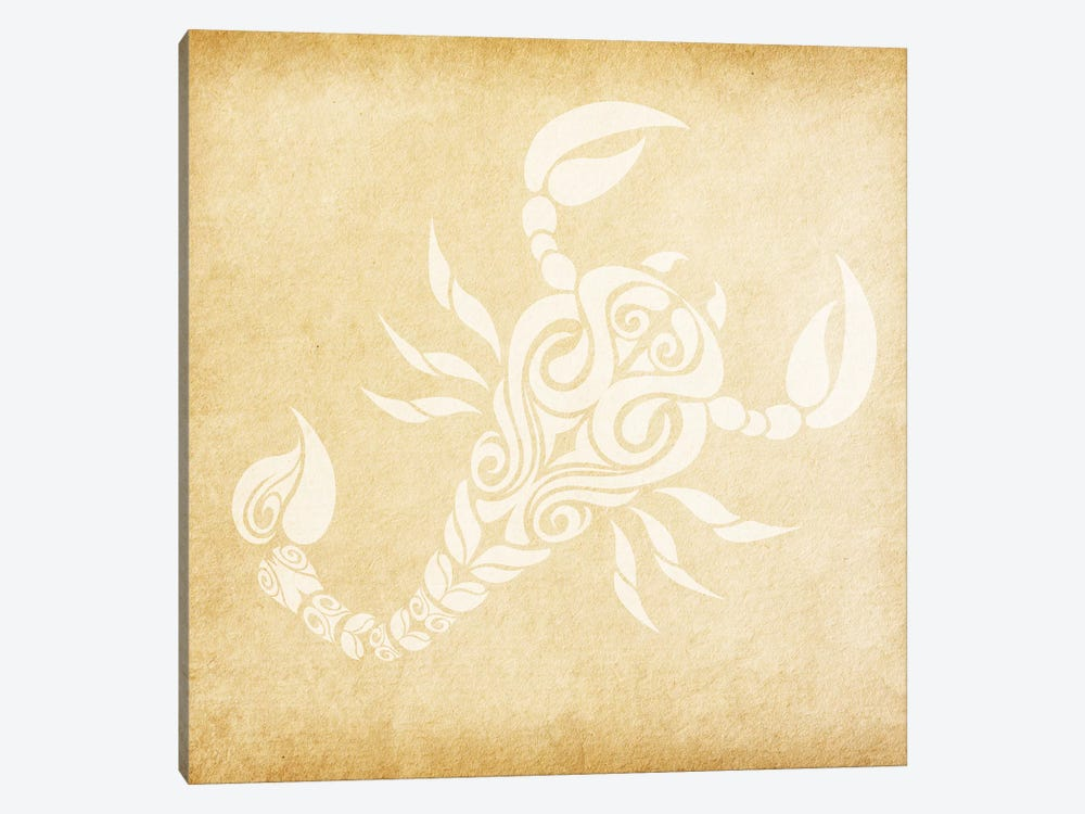 Passionate Scorpion by 5by5collective 1-piece Canvas Artwork