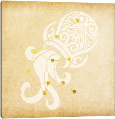 Witty Water-Bearer with Constellation Canvas Print #SOL23