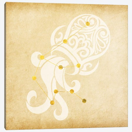 Witty Water-Bearer with Constellation Canvas Print #SOL23} by 5by5collective Canvas Print