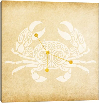 Caring Shellfish with Constellation Canvas Art Print